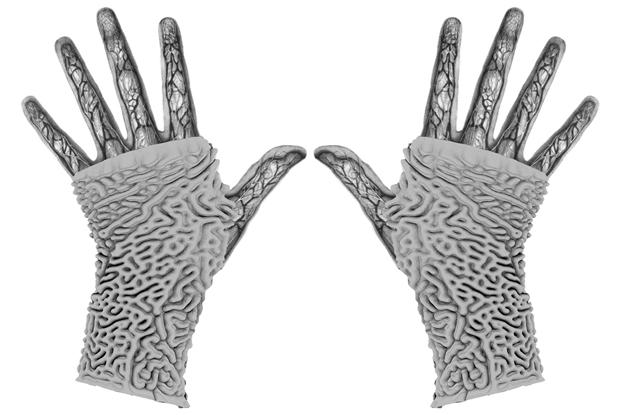 Nerve Alignment