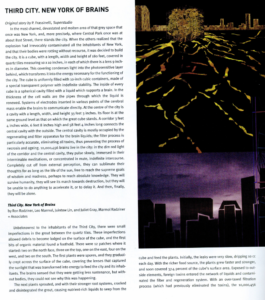 Flaunt Article Written by Juintow Lin from FoxLin Architects